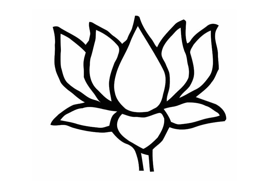 875x620 Lotus Flower Clip Art