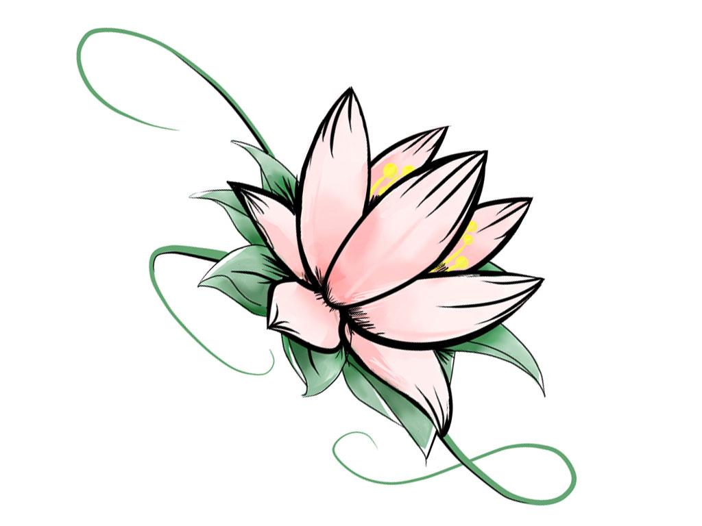 1024x768 Lotus Flower Drawing Pictures Lotus Drawing Free Download Clip