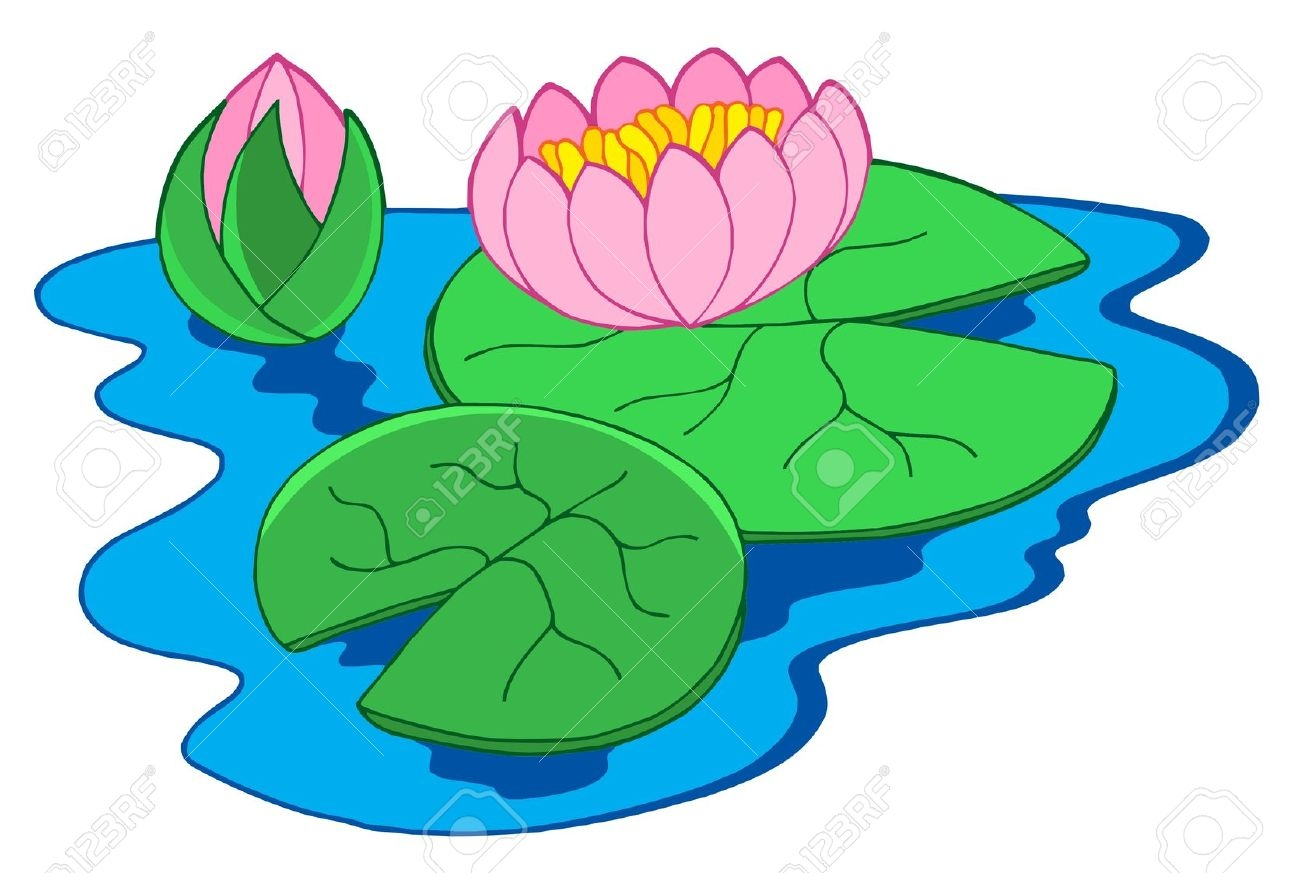 1300x873 Pond Flower Clipart, Explore Pictures