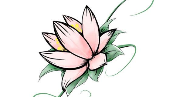 570x320 Simple Lotus Flower Drawing White Lotus Flower Clip Art Jos