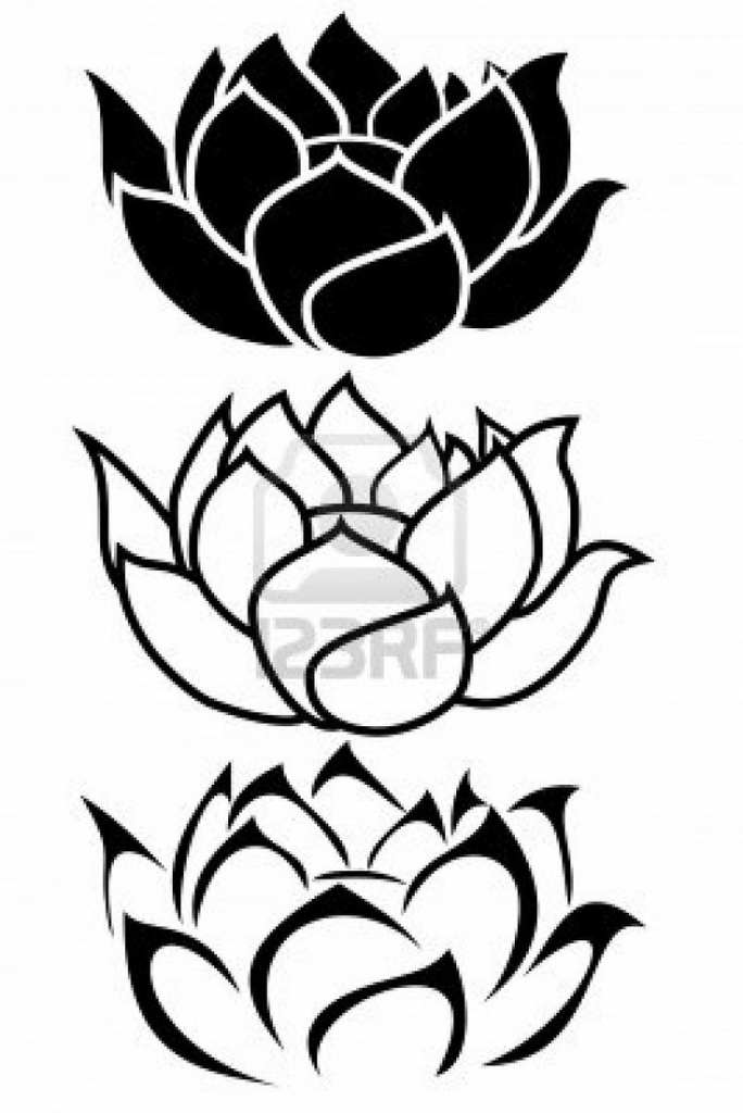 684x1024 Lotus Flower Line Drawing Flower Line Drawing