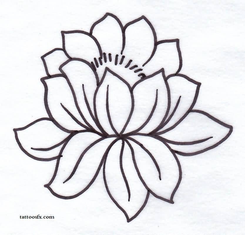 Lotus flower outline free download best lotus flower outline on 834x799 37 outline lotus tattoos collection mightylinksfo