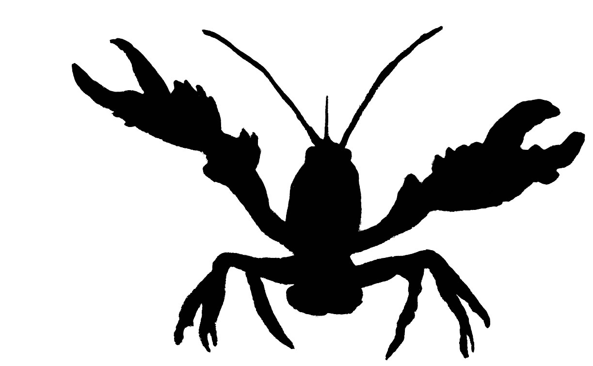 90fe509f Collection of Crawfish clipart   Free download best Crawfish clipart ...