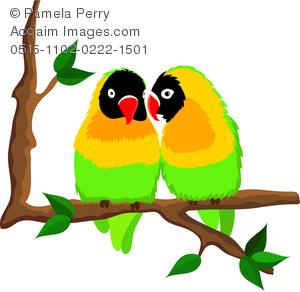 300x292 Art Image Of Two Lovebirds Sitting On A Tree Branch