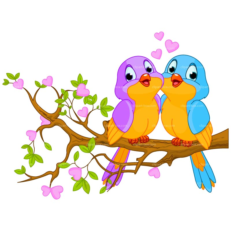 800x800 Love Bird Clip Art Dromggm Top