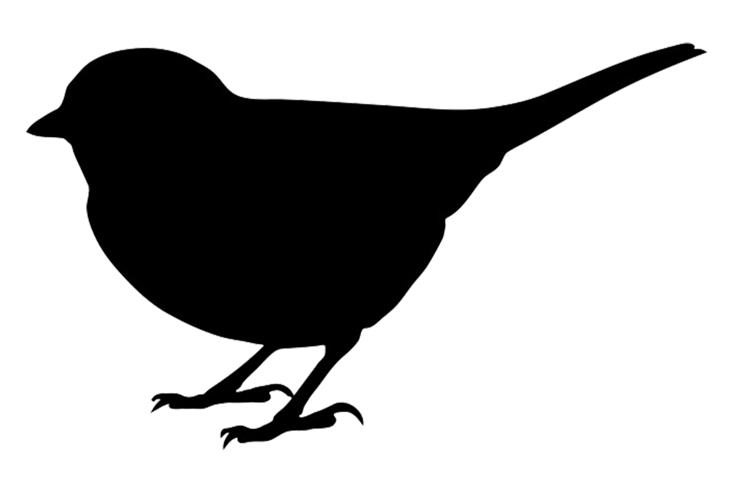 1494x981 Finch clipart bird silhouette