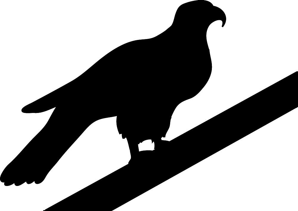 1000x708 Bird Silhouettes