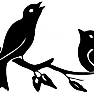 320x320 Love Bird Silhouette Branch Images Birds