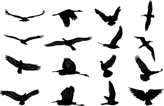 571x368 Love Birds Silhouette Free Vector Download (11,524 Free Vector