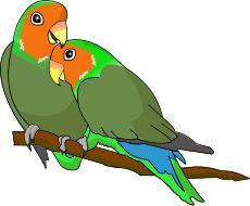 230x190 Lovebird clipart green bird