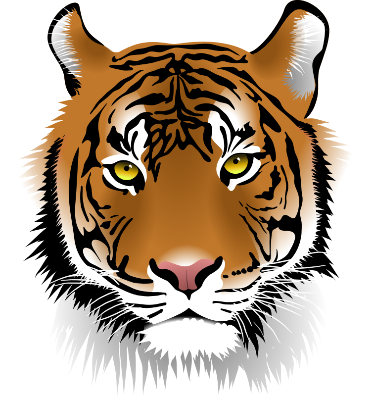754x800 Free Tiger Clipart