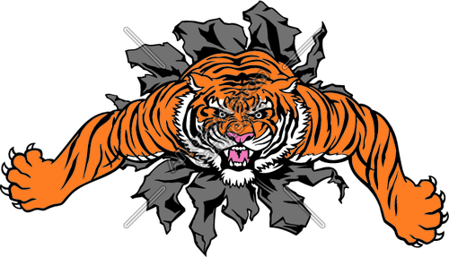 500x287 Image Result For Tiger Clip Art Animal Clip Art