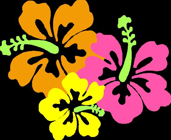570x466 Hawaiian Luau Clip Art Border Clipart Free To Use Clip Art