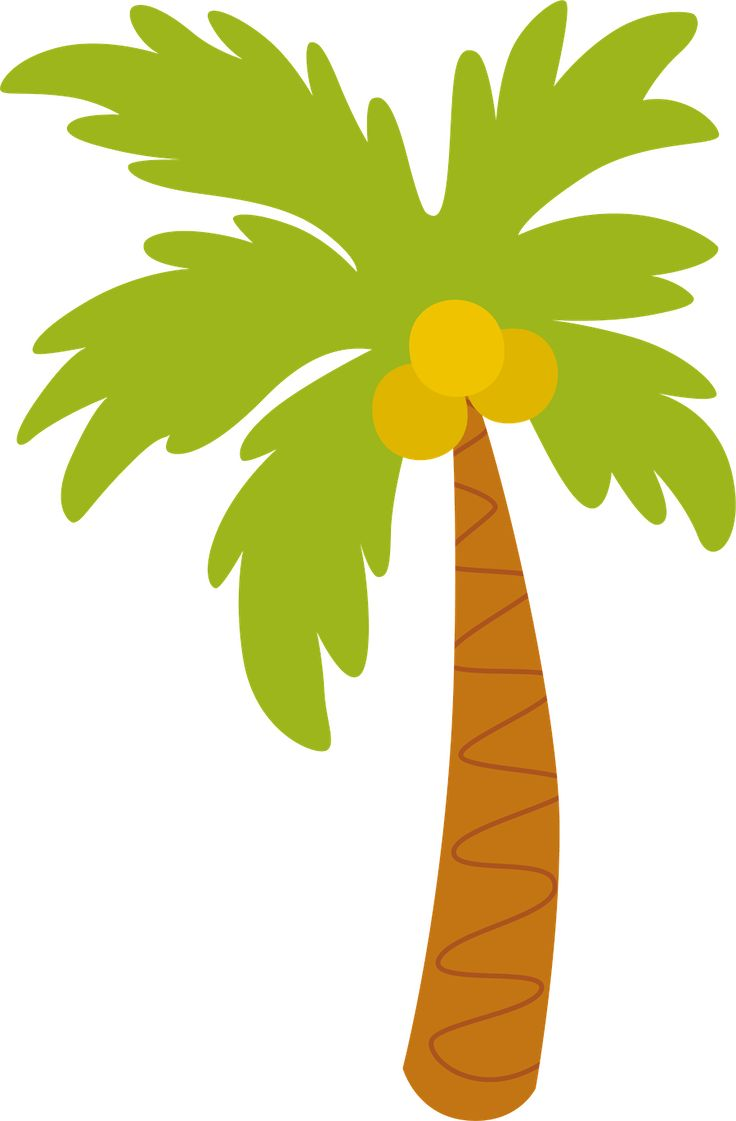 736x1121 Best Palm Tree Clip Art Ideas Palm Tree Images