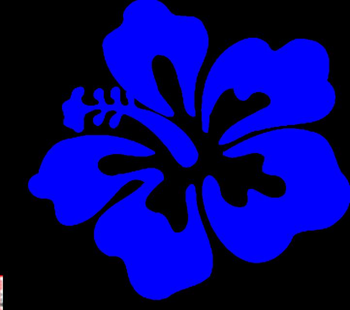 722x640 White Flower Clipart Luau