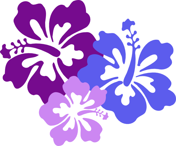 600x496 Hawaiian Flower Clip Art Borders Free Clipart Images 6
