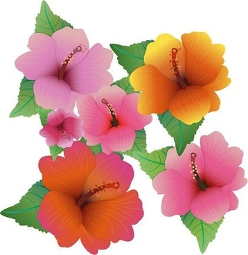 358x368 Hawaiian Hibiscus Flower Clip Art Free Vector Download (213,942