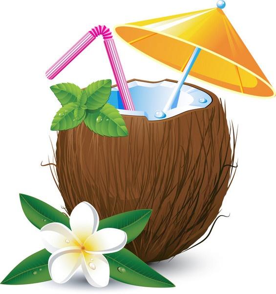 565x600 Coconut Clipart Luau