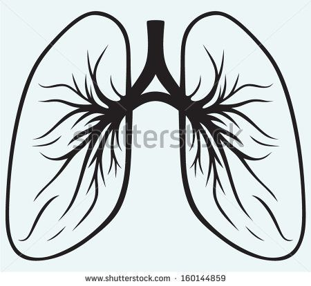 450x414 38 Best Lung Disease Graphics Images Artists