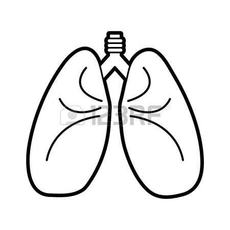 450x450 Colorful Lungs Doodle Over White Background Vector Illustration