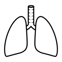 200x200 Lungs Outline Cliparts 229721