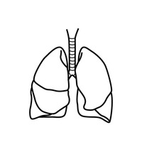 200x200 Lungs Outline Cliparts
