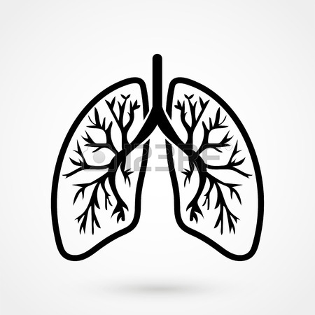 450x450 Lungs Sign. Human Internal Organ Anatomy Icon Royalty Free