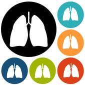 170x170 Human Lungs Clip Art