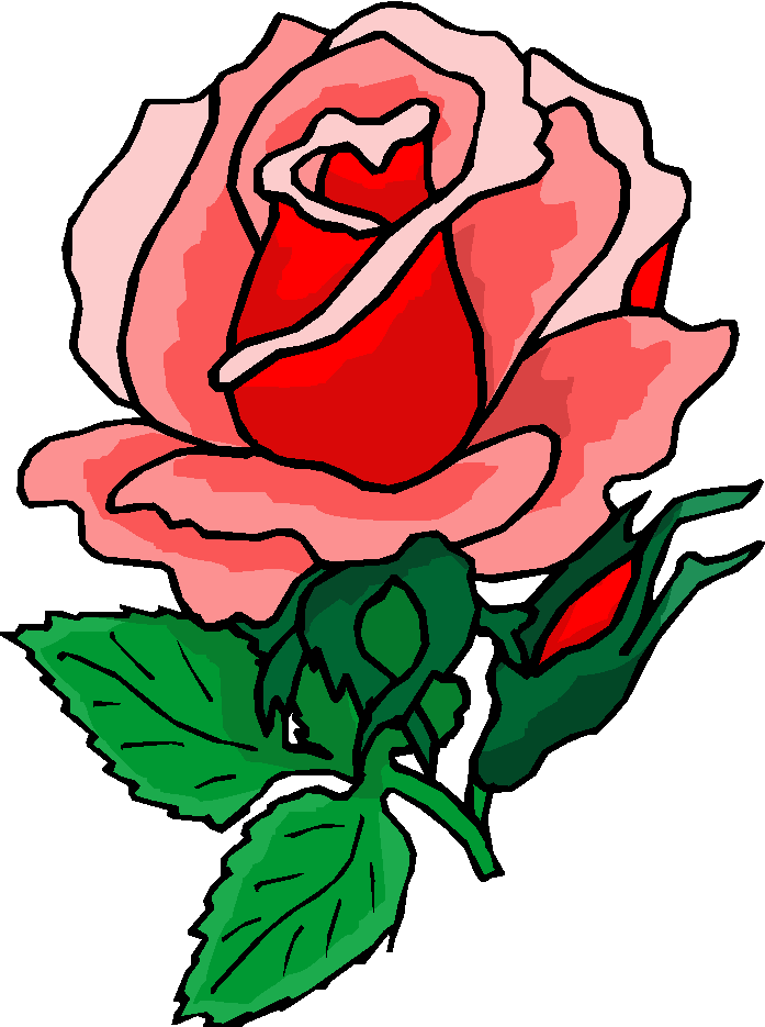 697x935 Rose Clipart