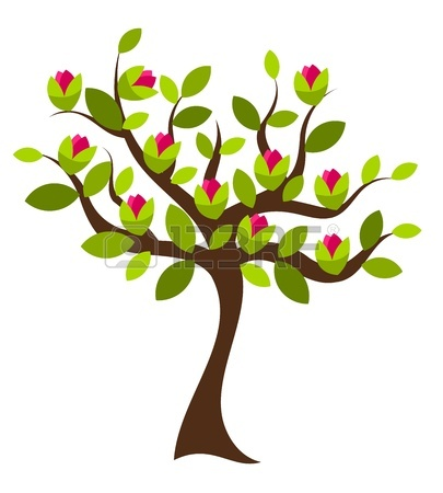 405x450 3,990 Magnolia Stock Vector Illustration And Royalty Free Magnolia
