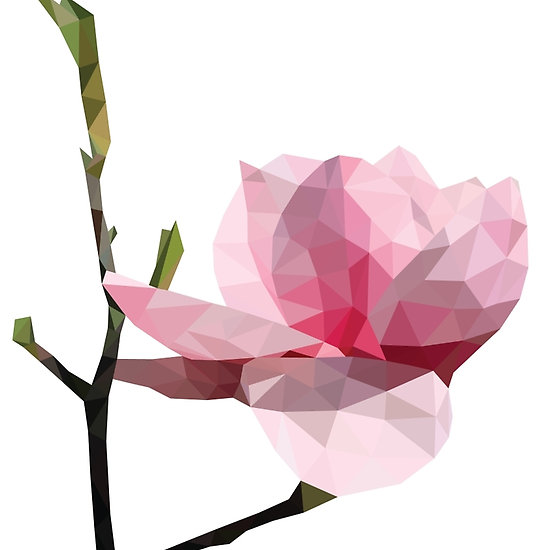 550x550 Low Poly Pink Magnolia Flower Kvety Flowers