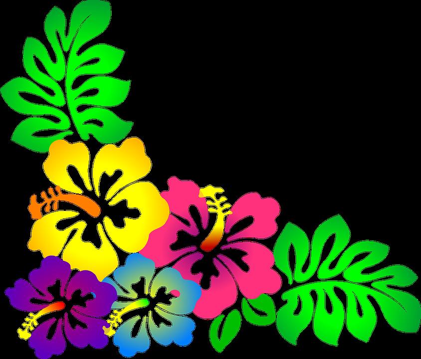 844x720 Hawaiian Luau Png Transparent Png Images. Pluspng