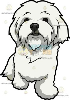 236x335 Maltese Puppy Dog Maltese, Characters And Dog