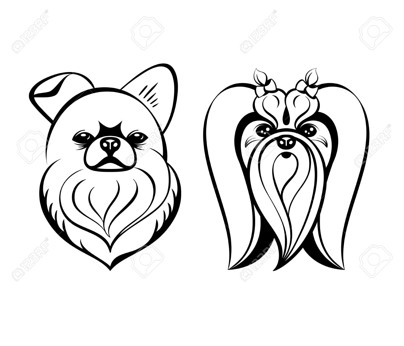 1300x1114 Maltese Dog Heads Contour Drawing Isolated Royalty Free Cliparts