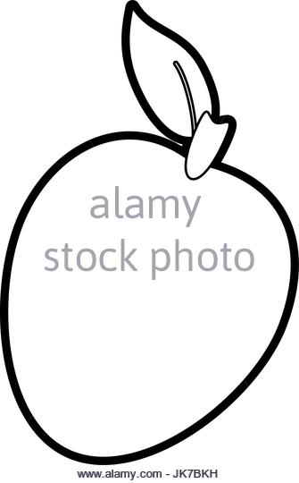 335x540 Mango Illustration Stock Photos Amp Mango Illustration Stock Images