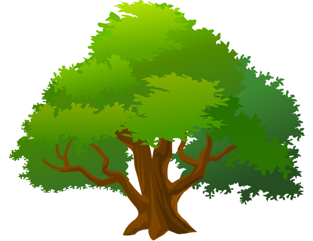 Mango Tree Clipart | Free download on ClipArtMag