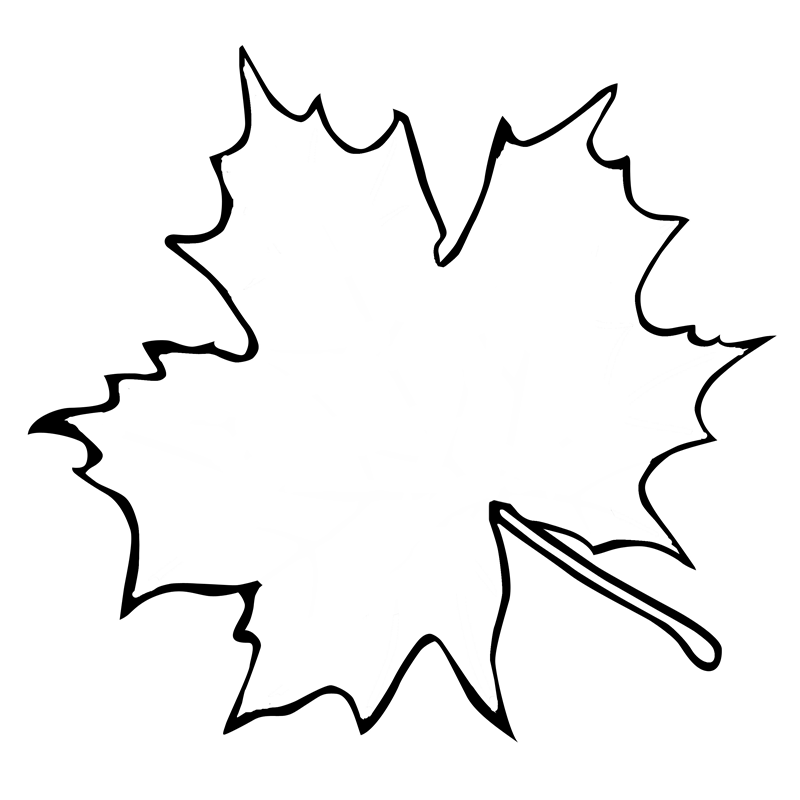 800x800 Leaf Outline Leaf Clip Art Black Outline Free Clipart Images