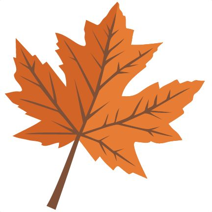 432x432 The Best Maple Leaf Clipart Ideas Maple Leaf