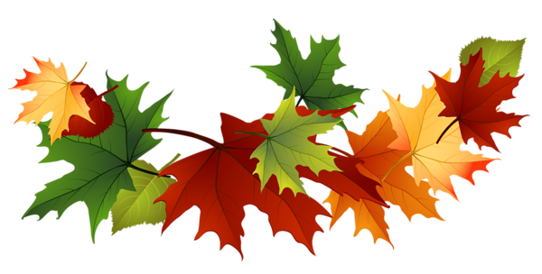 600x304 Free Clipart Of Leaves
