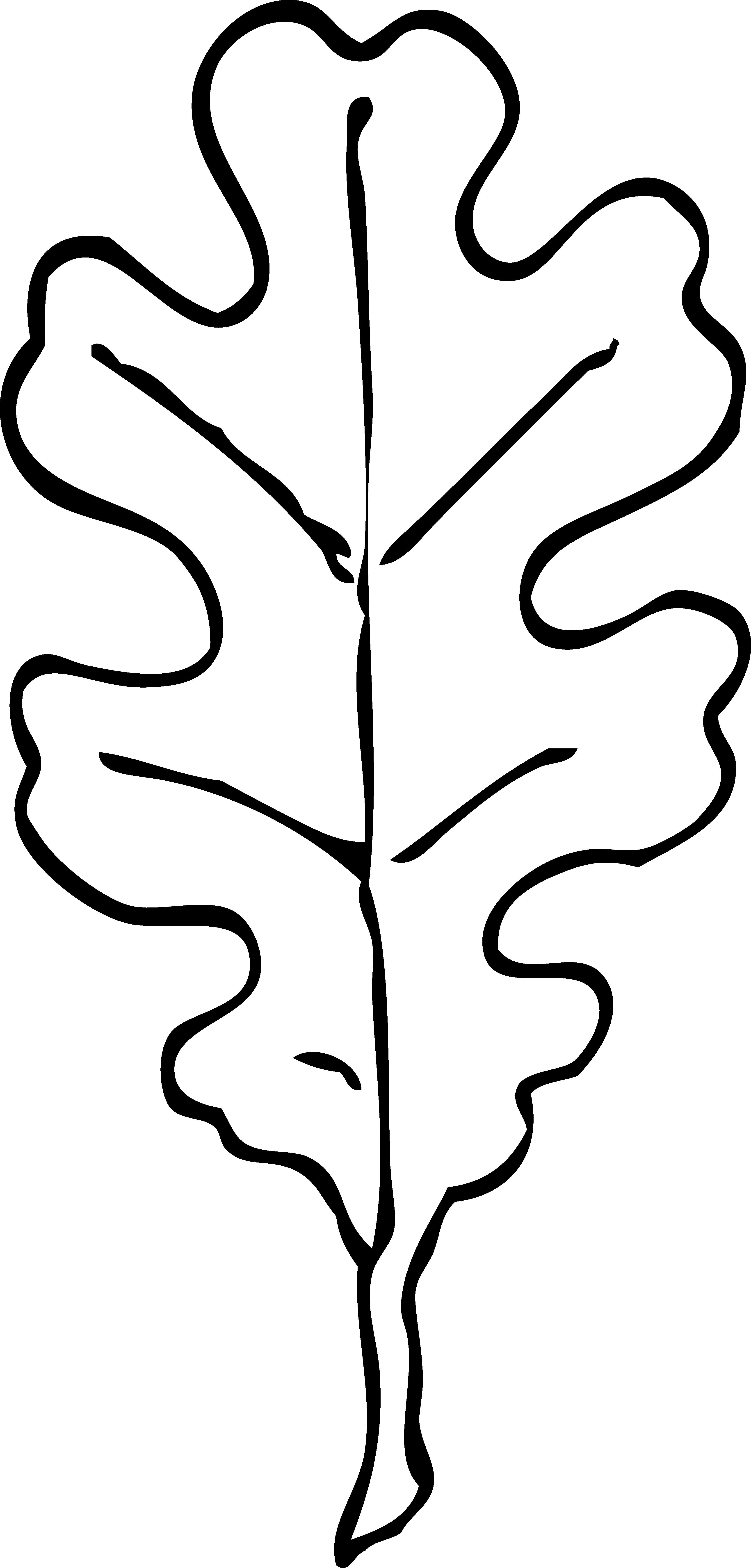 3333x6960 Leaf Clip Art Black And White