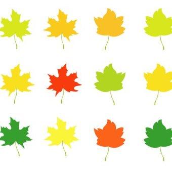 340x340 Autumn Background Vectors Download Free Vector Art