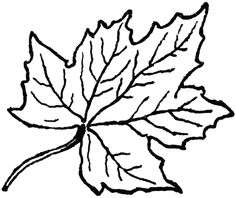 236x198 Maple Leaf Black And White Clipart Panda Free Clipart Images