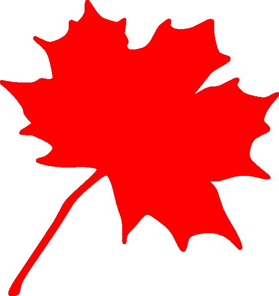 564x599 Maple Leaf Clip Art
