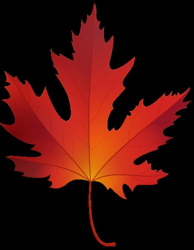 388x500 Autumn Maple Leaf Png Clip Art Clip Art Clip Art