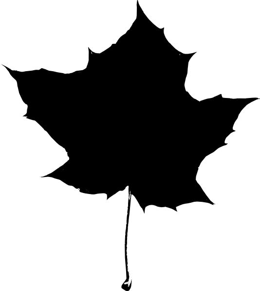534x597 The Best Maple Leaf Clipart Ideas Maple Leaf