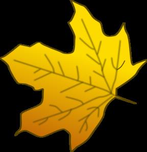 288x299 Yellow Maple Leaf Clip Art