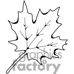 300x300 Sugar Maple Leaf Clipart