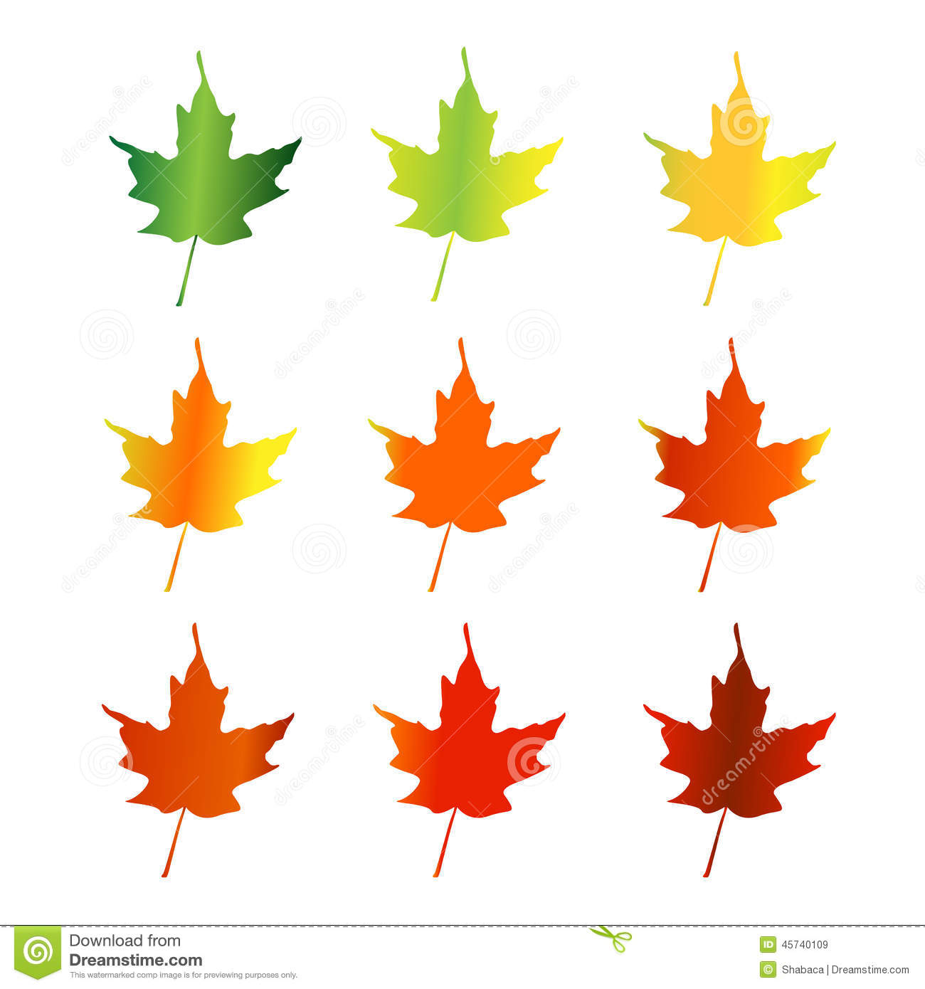 1300x1390 Maple Leaf Clipart Spring Leaves