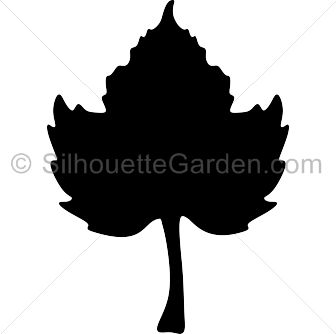 336x334 The Best Leaf Silhouette Ideas Leaf Stencil