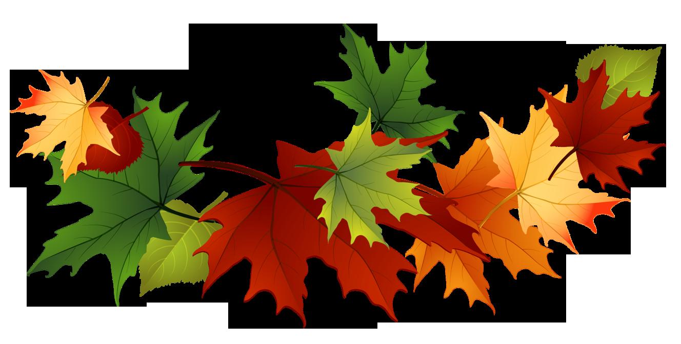 1328x672 Fall Leaves Clip Art